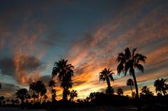 Tucson solnedgång 2 Arkivbilder