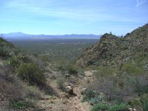 Tucson Valley Royalty Free Stock Photography