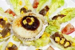 Tudela knospt Salat Lizenzfreie Stockbilder
