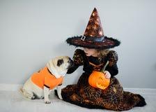 Tudo Hallows a véspera A menina no terno do feiticeiro mau senta-se no assoalho e passa-se um pug amusing Fotografia de Stock
