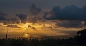 Tudo que toca na luz é seu reino Por do sol em Osa Foto de Stock Royalty Free