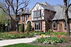 Tudor et tulipes photo libre de droits