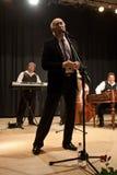 Tudor Gheorghe in concert at Izbiceni, Olt Stock Image