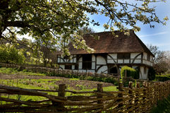 Tudor House and Garden. In spring sunshine Royalty Free Stock Images