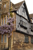 Tudor property with wisteria. Ancient half-timbered house in Sherborne, Dorset Stock Photo
