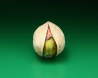 Tuerca de pistacho Fotografía de archivo libre de regalías
