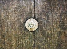 Tuerca en de madera Imagen de archivo libre de regalías