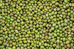 Tuerca verde Imagen de archivo libre de regalías