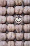 Tuercas Foto de archivo libre de regalías