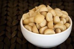Tuercas de macadamia Foto de archivo libre de regalías