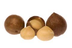 Tuercas de macadamia Fotografía de archivo libre de regalías