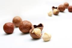 Tuercas de macadamia Fotos de archivo libres de regalías