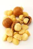Tuercas de macadamia aisladas Fotos de archivo libres de regalías