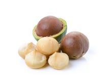 Tuercas de macadamia en el fondo blanco Foto de archivo