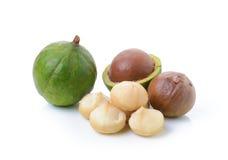 Tuercas de macadamia en el fondo blanco Imagen de archivo libre de regalías