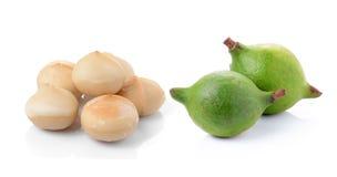 Tuercas de macadamia en el fondo blanco Fotografía de archivo libre de regalías
