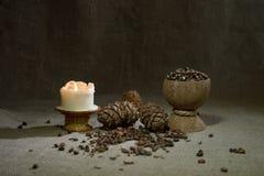 Tuercas de pino en la arpillera Fotos de archivo libres de regalías