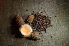 Tuercas de pino en la arpillera Imagen de archivo libre de regalías