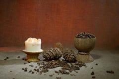 Tuercas de pino en la arpillera Imagenes de archivo