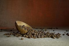 Tuercas de pino en la arpillera Fotografía de archivo