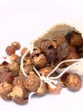 Tuercas del jabón Imagen de archivo