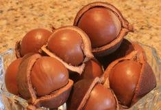 Tuercas en tazón de fuente Foto de archivo libre de regalías