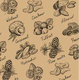 Tuercas fijadas ilustración del vector