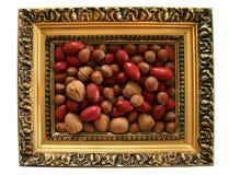 Tuercas mezcladas enmarcadas. Fotos de archivo libres de regalías