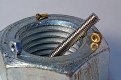 Tuercas - y - primer 1 de los tornillos Fotografía de archivo