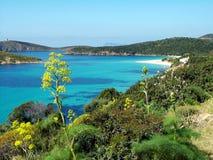 Tuerredda Beach. The scenic Tuerredda Beach near Capo Malfatano (South Sardinia - Italy Royalty Free Stock Photo