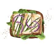 Tueste con queso, la cebolla y la lechuga asados a la parrilla del queso de soja ilustración del vector