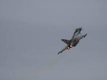 Tufão do RAF Eurofighter Fotos de Stock Royalty Free