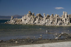 tufa озера образований mono Стоковое фото RF