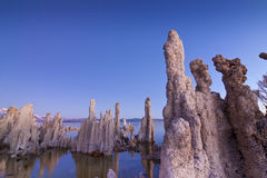 Tufa Closeup Royalty Free Stock Photos