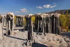 Tufa Formations, Mono Lake, California. Mono Lake Tufa Formations, dry area Stock Image