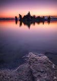 Tufa formations in Mono Lake. Tufa towers emerging from the surface, Mono Lake, California Royalty Free Stock Image