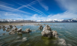 From the Tufa of Mono Lake. A small forest of tufa rises from the shores of Mono Lake Stock Photos
