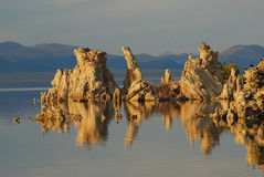 Tufa Reflections Mono Lake Royalty Free Stock Photos