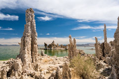 Tufa in the salty waters of Mono Lake in California Stock Image