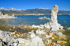 Tufa spires rising out of Mono Lake, California Royalty Free Stock Image