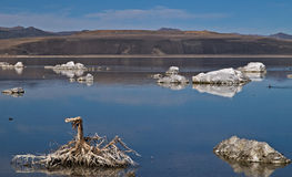 Tufas at mono lake Stock Photo