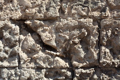 Tuff Wall Texture Stock Images