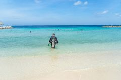 Tuffandosi ai punti di vista del Curacao della spiaggia Immagini Stock