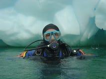 Tuffandosi in Antartide Immagine Stock