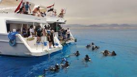 Tuffandosi nel Mar Rosso Egypt immagini stock