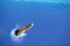 Tuffandosi nell'acqua Fotografia Stock