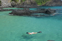 Tuffarsi una spiaggia cristallina del mare in Fernando de Noronha Immagine Stock