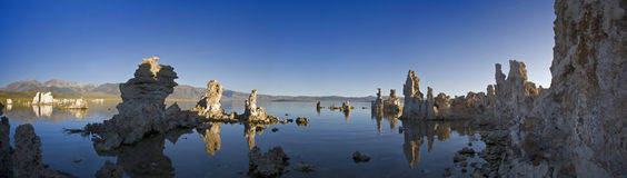 Tuffas in the lake. Panoramic view of the tuffas in the lake Stock Images