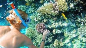 Tuffo della donna subacqueo nell'immergersi la maschera di immersione subacquea archivi video