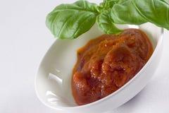 Tuffo della salsa Fotografia Stock